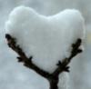 сердце снег