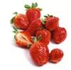 Gera: strawbery