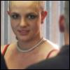 brit bald voyeur