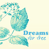 Aija: Dreams For Free