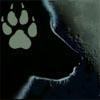 steppenwolf_20