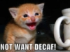 not want decaf kitty