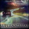 Impala on the Road
