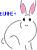 Constance - Make tea, not war: support bunneh