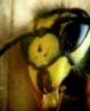 goncharowa userpic