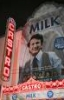 harvey milk, milk, lgbt, castro theater