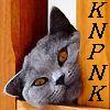 knpnk