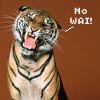 animals---tiger_no wai!