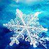 thekittenkat: snowflake by justlook3