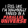 Diagonally parked in a parallel universe
