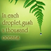 In each droplet gush a thousand oceans