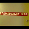 the state: emergency bear