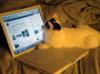 kitty computer