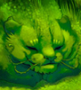 Травяной кот