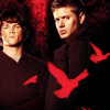 wyntertwilight: (spn) red