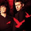 wyntertwilight: (spn) red