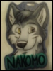 nakomo userpic