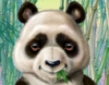 moshingpanda userpic