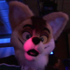 Fursuit Rave