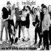 Twilight Fan Fictions