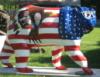 Patriot bear