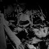 krustaceanradio userpic