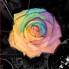 mia_ibuki userpic