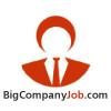bigcompanyjob userpic