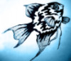 small_sad_fish userpic