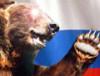 russian_bear200 userpic