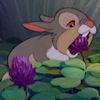 Thumper Clover