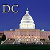 Spicedogs: DC