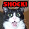 "Amber ""glych"" Greenlee: shock"