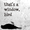 the plucky young girl who helps the Doctor: cameron - text - window bird