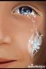 сльоза-фея