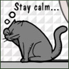 kitty stay calm