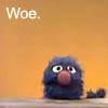 ss grover woe