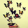Janeymouse: music & butterflies