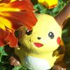 Pokemon - Flowers
