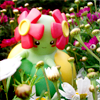 Pokemon - Bellossom