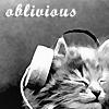 multi -- oblivious kitty