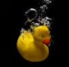 morethansirius: Rubber Ducky Sinking