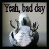 bird bad day by mdarkdreamer