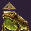 Talisman, toad