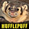 EmmyMik: [Hufflepuff] Badger