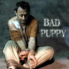 Bad Puppy by divka