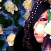 Asagi - [snow white making] White Roses