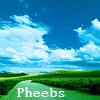 Pheebs Green Road