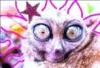 lemureinmachina userpic