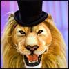 Lion top hat